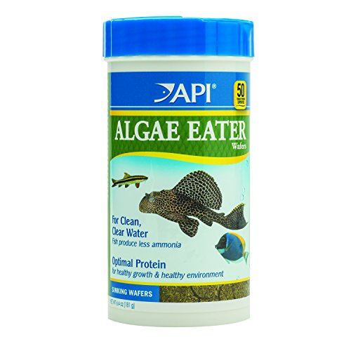 API ALGAE EATER WAFERS Algae Wafer Fish Food 6.4-Ounce (Algae Fish)