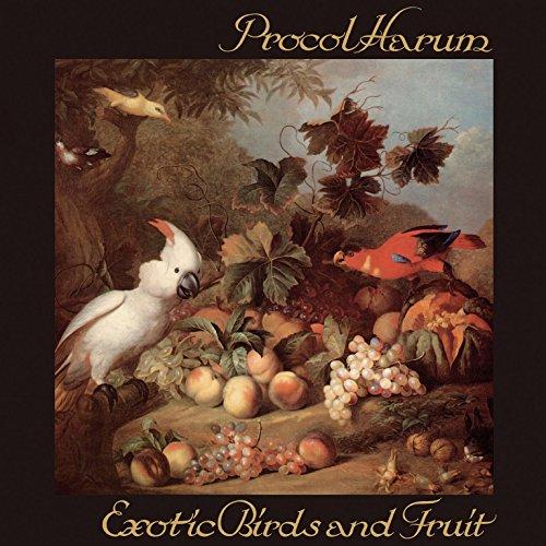 Price comparison product image Exotic Birds & Fruit