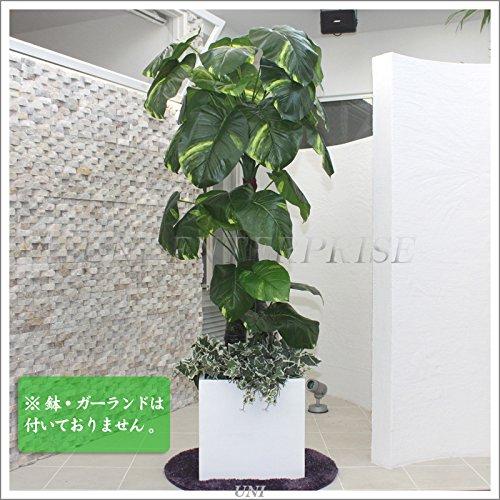 Funderful 人工観葉植物 光触媒 ポトス 170cm B01BW98X74