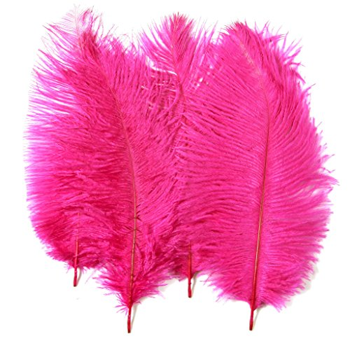 Pink Ostrich Feathers - Ostrich Feathers,Plume, Hgshow 10pcs Feather 12-14 inch(30-35cm) for Home Wedding Decoration
