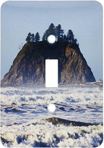 - 3dRose lsp_192018_1 Usa Washington, Olympic National Park, Cape Alava, Sea Stacks, Toggle Switch