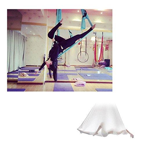 Egojin Elastic 5 meters 2016 Aerial Yoga Hammock Swing Latest Multifunction Anti-gravity Yoga belts for yoga training Yoga for sporting (pink)