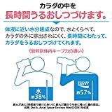 Otsuka Pharmaceutical Pocari Sweat Powder for 10l
