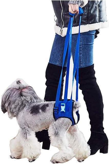 ZZQ Las ayudas para la Movilidad del Perro soportan la Eslinga ...