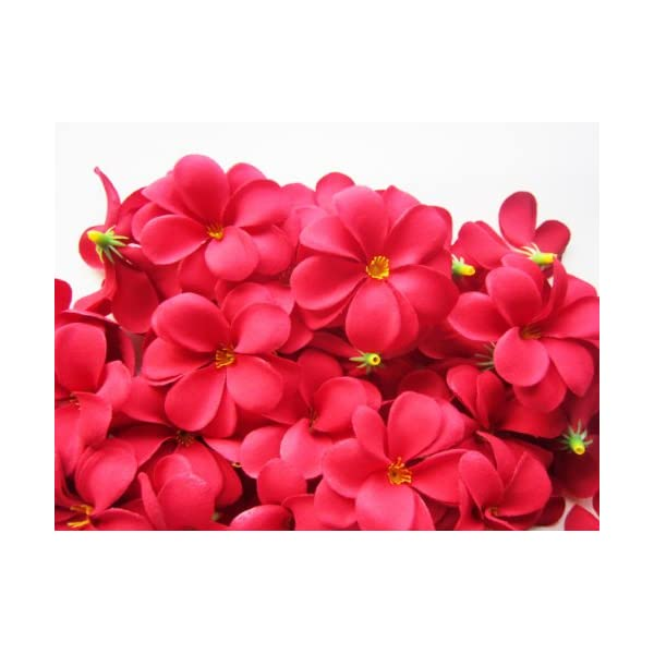 (100) Red Hawaiian Plumeria Frangipani Silk Flower Heads – 3″ – Artificial Flowers Head Fabric Floral Supplies Wholesale Lot for Wedding Flowers Accessories Make Bridal Hair Clips Headbands Dress