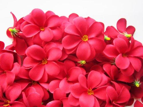 ((100) Red Hawaiian Plumeria Frangipani Silk Flower Heads - 3