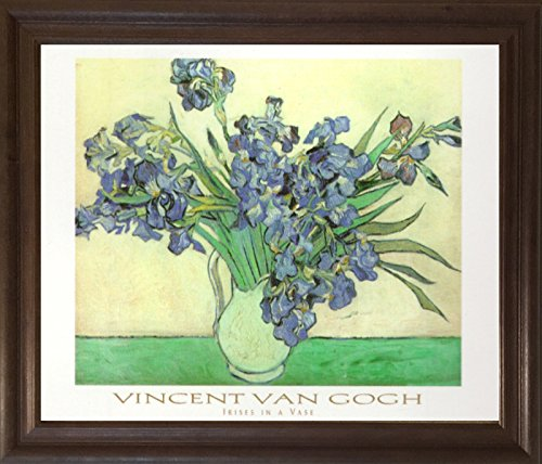 Van Gogh Iris (Vincent Van Gogh Iris Flower in vase Brownrust Framed Picture Floral Art Print (19x23))