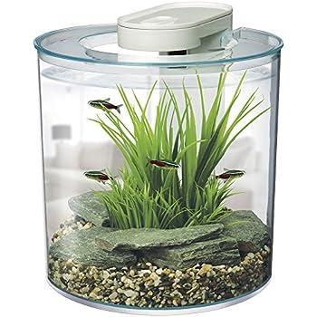 Amazon.com : Fluval Chi Aquarium Kit, 5-Gallon : Aquarium ...