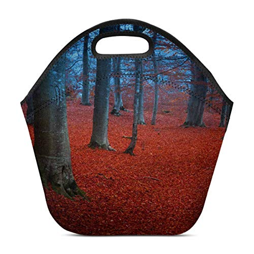 InterestPrint Mystic Forest with Red Leaves and Blueish Atmosphere Fairytale Lunch Tote Bag Neoprene - Insulated Waterproof Lunch Box Handbag Cooler for Women Adults Kids 11.93