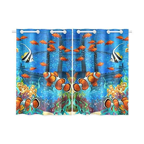 Tropical Fish Window - 5