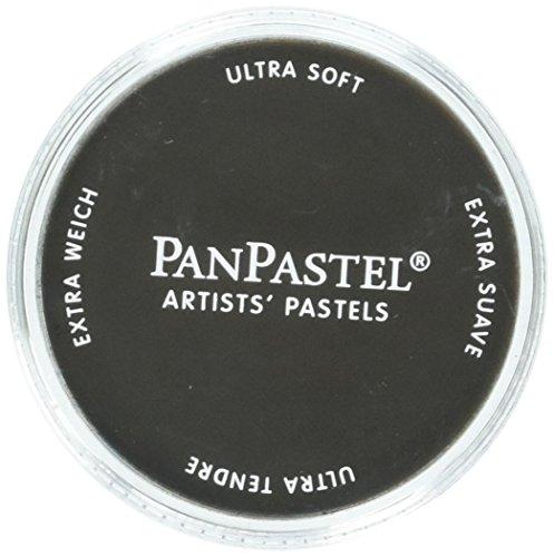 PanPastel Ultra Soft Artist Pastel, Raw Umber Extra Dark (Raw Light Umber)