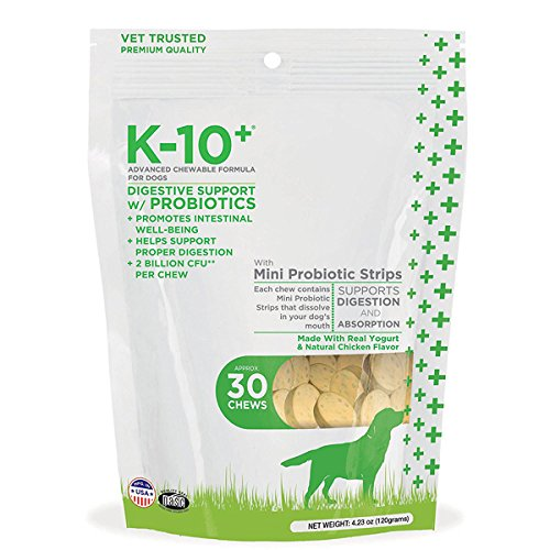 Cheapest K-10+ Digestion support with Probiotic advanced Chewable Formula for Dogs (Pack of 30) Check this out.
