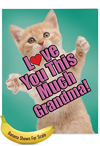 J6610GMGG Jumbo Humor Mother's Day Grandma Greeting Card: Cat Love You This Much Grandma, with Envelope (Big Size: 8.5