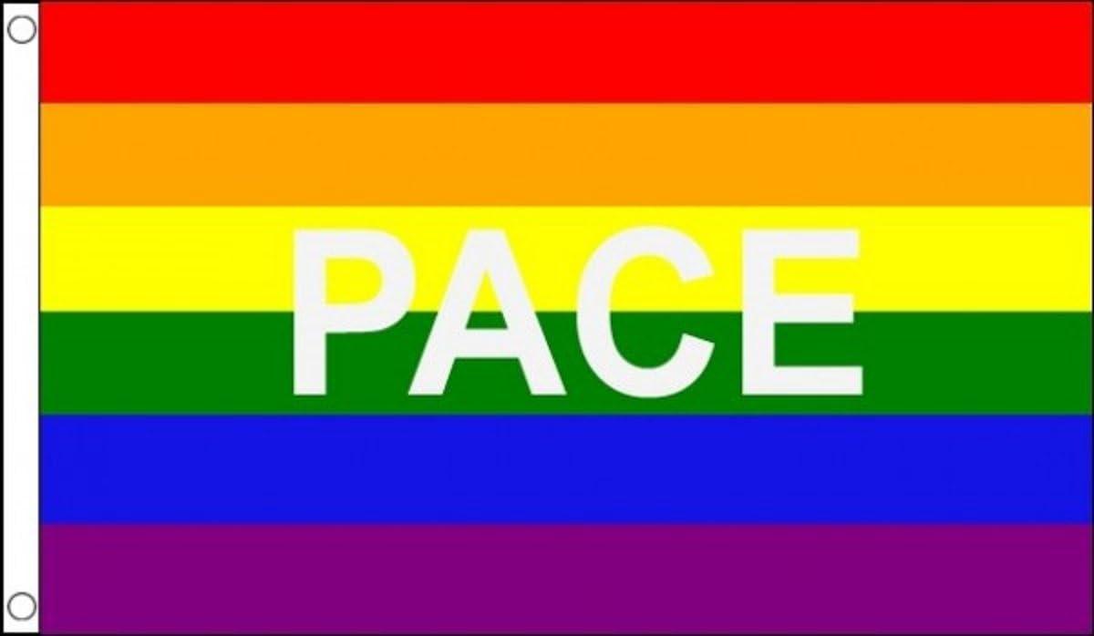 Rainbow LGBT Gay Pride With Happy Face 5/'x3/' Flag LAST FEW