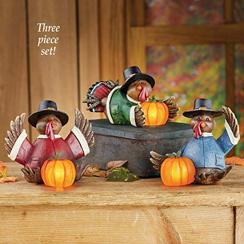 winston inc Lighted Pumpkins with 3 Turkey Shelf Sitters Fall Thanksgiving Figurines