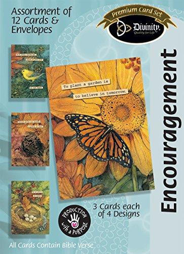 (Divinity Boutique Greeting Card Assortment: Encouragement, Woodland Birds)