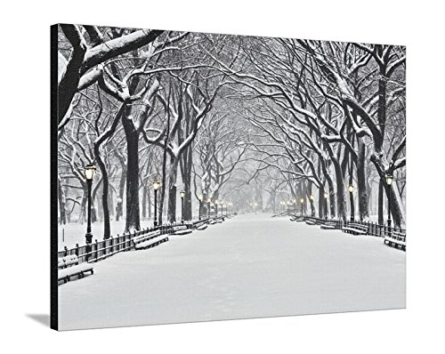 Canvas Print Wall Art 'Central Park in Winter' by Rudy Sulgan, 36x48 in