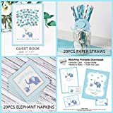 183 Piece Blue Elephant Baby Shower Decorations for