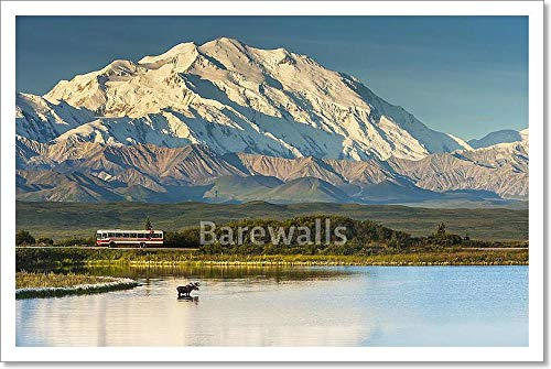 A Silhouette of A Bull Moose Feeding in A Pond Next to The Park Road in Early Morning Light in Denali National Park in South Central Alaska Paper Print Wall Art (12 in. x 18 in.)