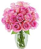 #8: KaBloom Sweet Pink Bouquet of 18 Fresh Cut Pink Roses (Farm-Fresh, Long-Stem)