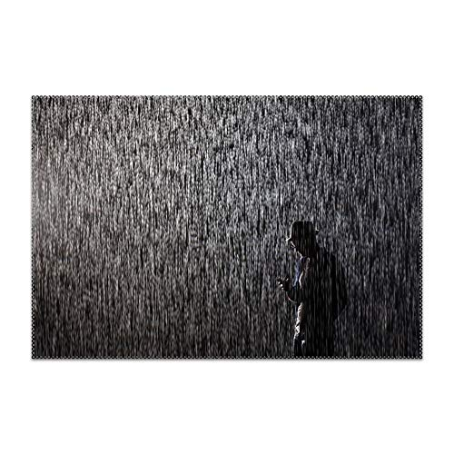Trongr Placemats for Dining Table Rain Room Durable Kitchen Table Mats Washable Heat Resistant Stain-Resistant Non Slip Placemat
