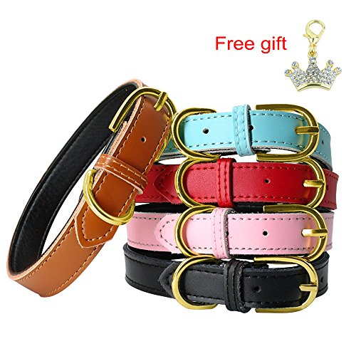 PET ARTIST Blue Classic Soft Padded Leather Dog Collar for Small&Medium Dogs