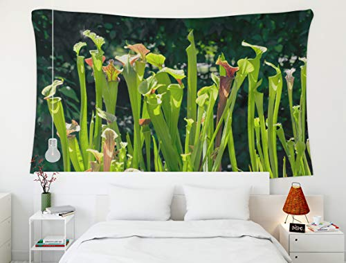 Shorping 80x60Inches Home Art of Cotton Tapestries Hanging Wall Tapestry,for Décor LivingRoom Dorm, Beautiful Red Green Pitcher Flower Plant That Insects Them plantsRed Sarracenia Traps digests