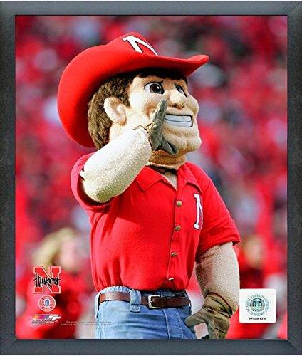 Herbie Husker Nebraska Cornhuskers 2006 Mascot Photo (Size: 17