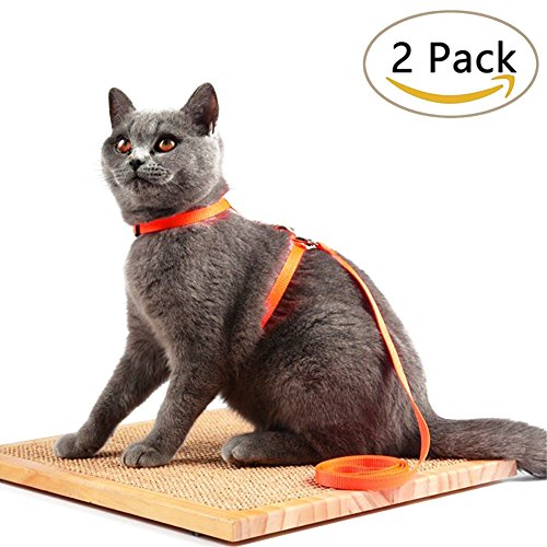 Cat Harness Adjustable Nylon Strap Collar - 2/Pack