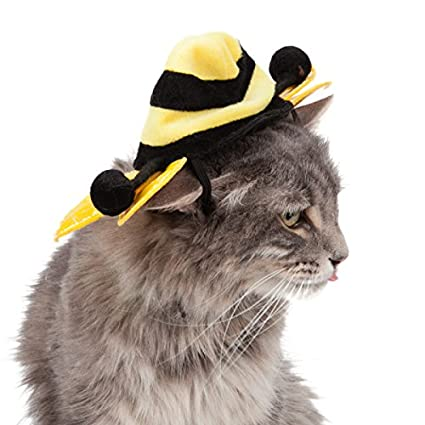 f95b40d411d Image Unavailable. Image not available for. Color  Pet Bee Hat