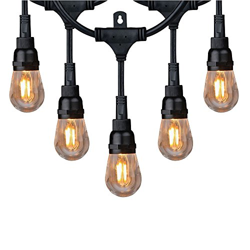 Honeywell 36 Foot Replaceable Filament Style Amber LED String Light Set, SW136A221110 by Honeywell