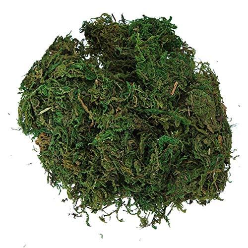 Reindeer Topiary (Artificial Moss - Gsfy Green Artificial Reindeer Moss Flower Garland Decor - Dark Bulk Runner Floral Panel Terrariums Purple Turquoise Topiary Live Vase Natural Super Pink Balls Green Shee)