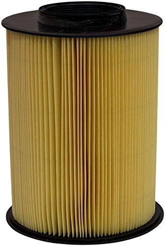 Luber-finer AF6908 Heavy Duty Air Filter