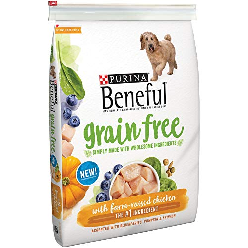 Purina Beneful Adult Dry
