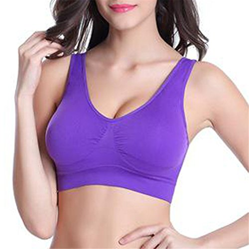 feilongzaitianba Sexy Seamless Bra Brassiere Women Bra Lovely Padded Bra Plus Size Bras Women Purple M ()