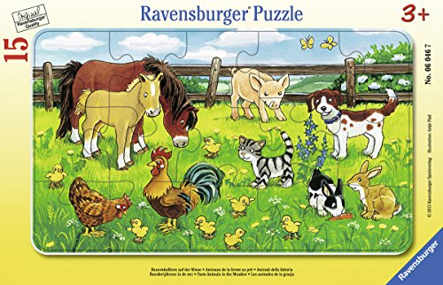 (Farm Animals in The Meadow)