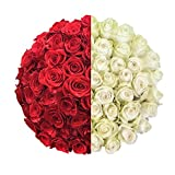 100 Red & White Roses - XXL Blooms - Long Stemmed - Farm Fresh - Magnaflor
