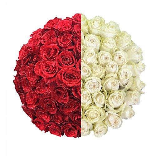 100 Red & White Roses - XXL Blooms - Long Stemmed - Farm Fresh - Magnaflor by Magnaflor