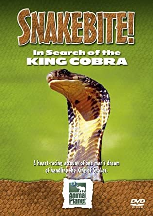 Amazoncom Snakebite In Search Of The King Cobra Import Anglais