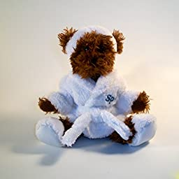 Stuffed Spa Bear-Gift Card Holder/Accessories & Money Holder for Birthday, Mother\'s Day, Bridal or Any Occasion (6 inch Brown Spa Bear Gift Card Holder)