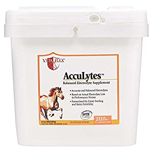 Vita Flex Accu Lytes Balanced Electolyte Supplement Powder 2