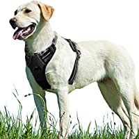 Eagloo No Pull Dog Harness with Front Clip,Walking Pet Harness with 2 Metal Ring and Handle,Reflective Oxford Padded Soft Vest for Small Medium Large Breed (Black, L)