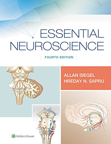 Pdf Medical Books Essential Neuroscience