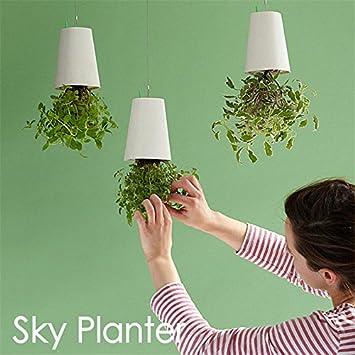 SmartLife Envers Sky Pot d\'arrosage automatique Pot de fleurs à ...