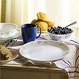 Corelle Livingware 16-Piece Dinnerware Set, Secret