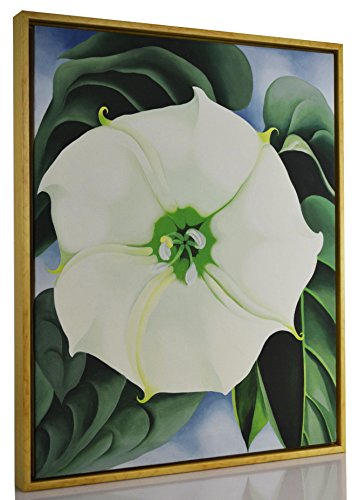 Georgia Okeeffe Jimson Weed (FRAMED Georgia O'Keeffe Giclee Canvas Print Paintings Poster Reproduction Fine Art Home Decor (Jimson Weed))