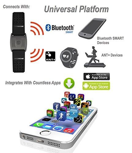 Amazon.com: SoulAr 730320 Scosche RHYTHM+ Pulse Monitor Armband: Electronics