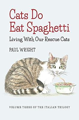 Cats Do Eat Spaghetti