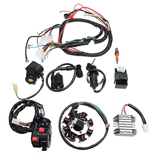 GOZAR Electric Wiring Harness Wire Loom CDI Motor Stator Full Set For ATV QUAD 150/200/250CC: Amazon.co.uk: Kitchen & Home