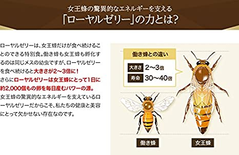 12mm Open Centre Novel Honey Bee Guard In Design;